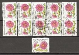 Belgique 2007 - Fleurs, Dahlia - Série Complète De Carnet - Petit Lot De 11 ° - 5 Timbres Différents (1 Non Adhésif) - Belgique
