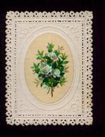CANIVET – Fleurs - Old Paper
