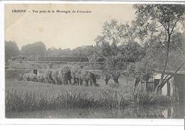 91 CROSNE . Vue De La Montagne De Crevecoeur , édit: Ricquebourg , écrite En 1910 , état Extra - Crosnes (Crosne)