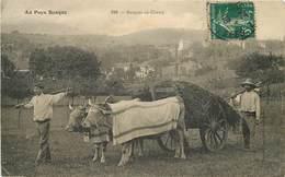 AU PAYS BASQUE - Basques Au Champ, Attelage De Bœufs. - Attelages