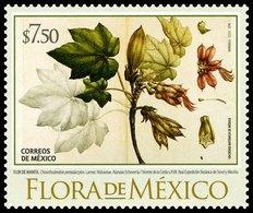 2018 FLORA DE MÉXICO MNH, Handyman Tree TREE & FLOWER (Chiranthodendron Pentadactylon) STAMP MNH - Mexico