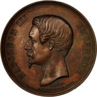 France, Médaille, Napoléon III, Endiguement De La Seine, 1858, Caqué, SUP - Other