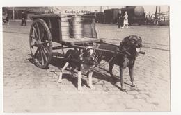 Knokke: Le Laitier.Hondenspan. (fotokaart) - Knokke