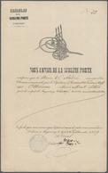 "Türkei - Stempel: 1869, ""CONSULAT LE TURQUIE A TAGANROG"" Blue Seal On Imprint Document ""NOUS CONSUL - Turkey"