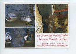 Cp Sur Multivues - La Grotte Des Petites Dalles - ST Martin Aux Bruneaux - Autres Communes
