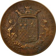 France, Médaille, Chambre De Commerce De Chartres, 1903, Desaide, SUP, Bronze - Other