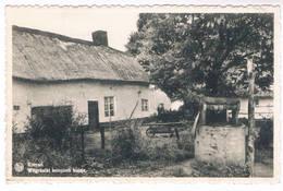 Koersel - Witgekalkt Kempisch Huisje - Beringen