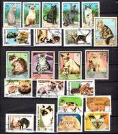 Chats 22 Timbres. Oblitérés  E 13 - Stamps