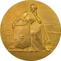 France, Médaille, Exposition Internationale De L'Est De La France, Nancy, 1909 - Other