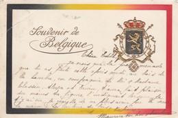 BELGIQUE / BELGIE / SOUVENIR DE BELGIQUE  1902 / CARTE EN RELIEF - Patriottiche