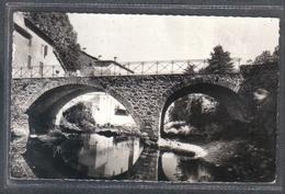 Carte Postale 30. Valleraugue  Le Pont Sur L'Herault     Très Beau Plan - Valleraugue