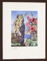 Collezionismo Menu Navi LLOYD Triestino Mn. Australia Pranzo 4 Giugno 1954 - Menus