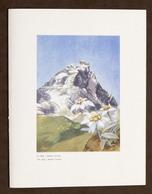 Collezionismo Menu Navi - LLOYD Triestino Mn. Australia 4 Giugno 1954 - Menus