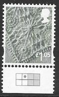 GB  - 2016 £1.05   Nth IRELAND  Stamp With CARTOR GRID -  -LITHO - Regionali