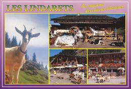 74 LES LINDARETS / ROYAUME DES CHEVRES LIBERTINES / MULTIVUES - France