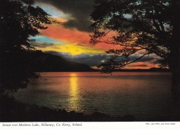 Sunset Over Muckross Lake, Killarney, Co. Kerry, Ireland - Unused - Kerry
