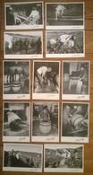 Lot De 12 Cartes Postales VIGNES & VIN Tonneliers / Photographe Claude Fagé - Vignes