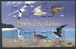 Maldive Is 2010 Birds Of The Maldives MS MUH - Maldives (1965-...)