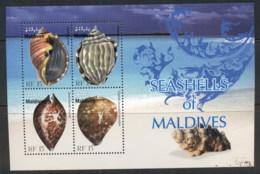 Maldive Is 2010 Shells MS MUH - Maldives (1965-...)