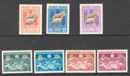Maldives 1963 FFH MUH Lot14377 - Maldives (1965-...)