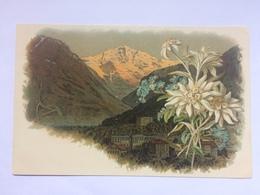 SWITZERLAND - Mountain Scene - Vintage Card - Unclassified