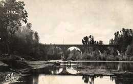 Cpsm Petit Format St LIEUX Les LAVAUR (Tarn) Le Pont Et La Plage RV - France