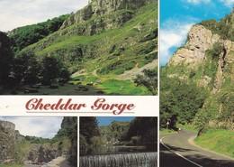Postcard Cheddar Gorge Somerset My Ref  B23113 - Cheddar