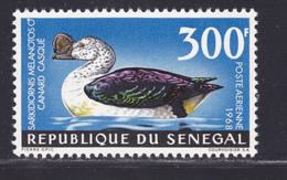 SENEGAL AERIENS N°   66 ** MNH Neuf Sans Charnière, TB (D7621) Oiseaux, Canard Casqué - 1968 - Senegal (1960-...)