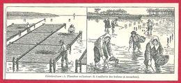 Ostréiculture, Plancher Collecteur, Cueillette Des Huîtres ( à Arcachon), Larousse 1908 - Old Paper