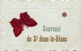 45 - LOIRET / Saint Jean Le Blanc - 455730 - Belle Carte Fantaisie - Frankreich