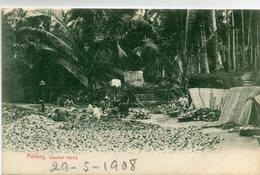 MALAISIE(PENANG) COCO - Malaysia