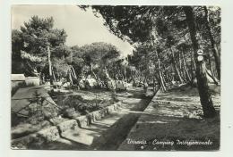 TIRRENIA - CAMPING INTERNAZIONALE  - VIAGGIATA FG - Pisa