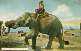 BIRMANIE(TYPE) RANGOON(ELEPHANT) - Brunei