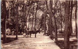 41 - MONTRICHARD -- La Plage  - Un Coin  Du Parc - Montrichard