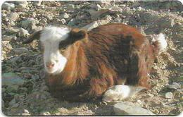 Oman - Chip - Goat - Animals - 05.2002, 200.000ex, Used - Oman