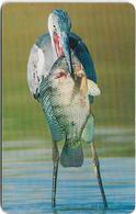 Oman - Chip - Grey Heron Eating Fish - Birds - 05.2002, 400.000ex, Used - Oman