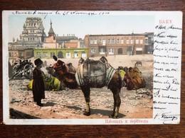 C.P.A. :  AZERBAIJAN :  BAKU, Camel  AZERBADJIAN : Chameau, Stamp In 1901 - Azerbaïjan