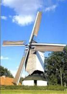 HEIST-OP-DEN-BERG (Antw.) - Molen/moulin - Mooie Opname Van De Gerestaureerde Kaasstrooimolen Met Pandoerenhoeve. - Heist-op-den-Berg