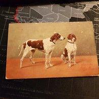 Peinture - 2 Chiens (D) - Perros