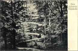 Cp Kleve Am Niederrhein, Schlangenweg, Partie Aus Dem Tiergartenwald, Serpentinen - Duitsland