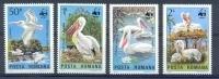 Mis022s WWF VOGELS PELIKAAN BIRDS PELICAN VÖGEL AVES OISEAUX ROEMENIË ROMANA 1984 PF/MNH  VANAF1EURO # - W.W.F.