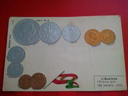 L AUTRICHE 1 KRONE 100 HELLERS PIECE DE MONNAIE - Münzen (Abb.)