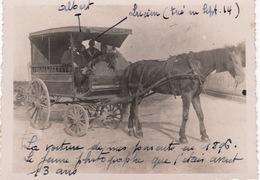 Photo Ancienne ( Carte Postale ) : Attelage   , Voiture à Cheval De 1896 - Non Classés