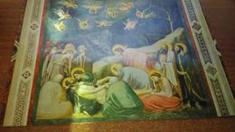 Cartolina:Padova Cappella Degli Scrovegni Giotto Non Viaggiata (a9) - Cartoline