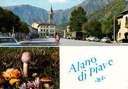 BELLUNO - Alano Di Piave - Panorama - Funghi / Fungo - 1973 - Belluno