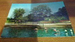 Cartolina:Mannheim   Non Viaggiata (a9) - Cartoline