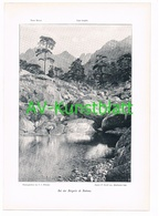 062-2 Korsika Corse Bergerie De Battone Druck 1901!! - Zonder Classificatie