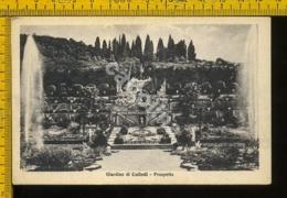 Pistoia Collodi - Pistoia