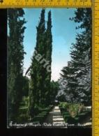 Firenze Barberino Del Mugello - Firenze