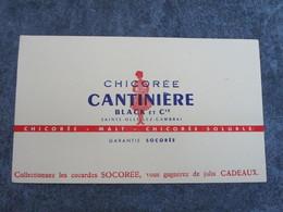Chicorée CANTINIERE BLACK & Cie - Alimentaire